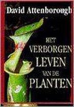 Verborgen leven van de planten