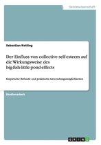 Der Einfluss von collective self-esteem auf die Wirkungsweise des big-fish-little-pond-effects