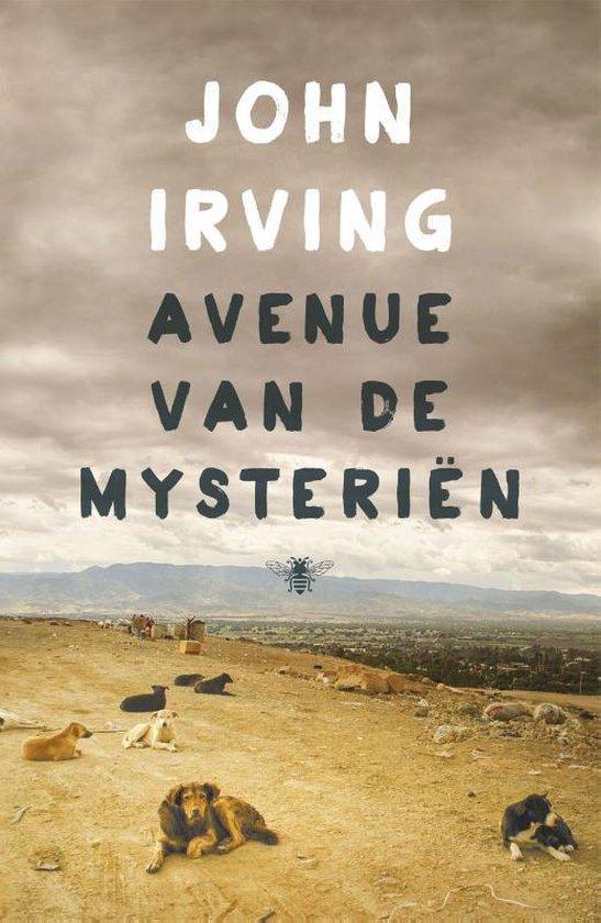 Avenue van de mysteriën - John Irving |