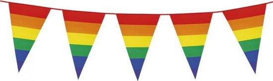 Giant Bunting PE 8m. rainbow - size flags: 30x45cm