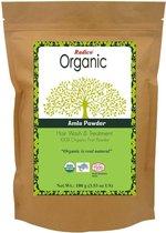 Radico Organic Amla Powder Hair Wash & Treatment Haarmasker - 100g