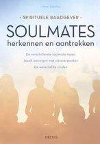 Boek cover Soulmates van Jenny Smedley