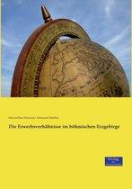 Die Erwerbsverhaltnisse im boehmischen Erzgebirge