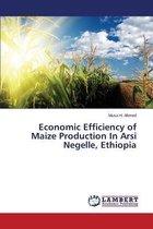Economic Efficiency of Maize Production in Arsi Negelle, Ethiopia