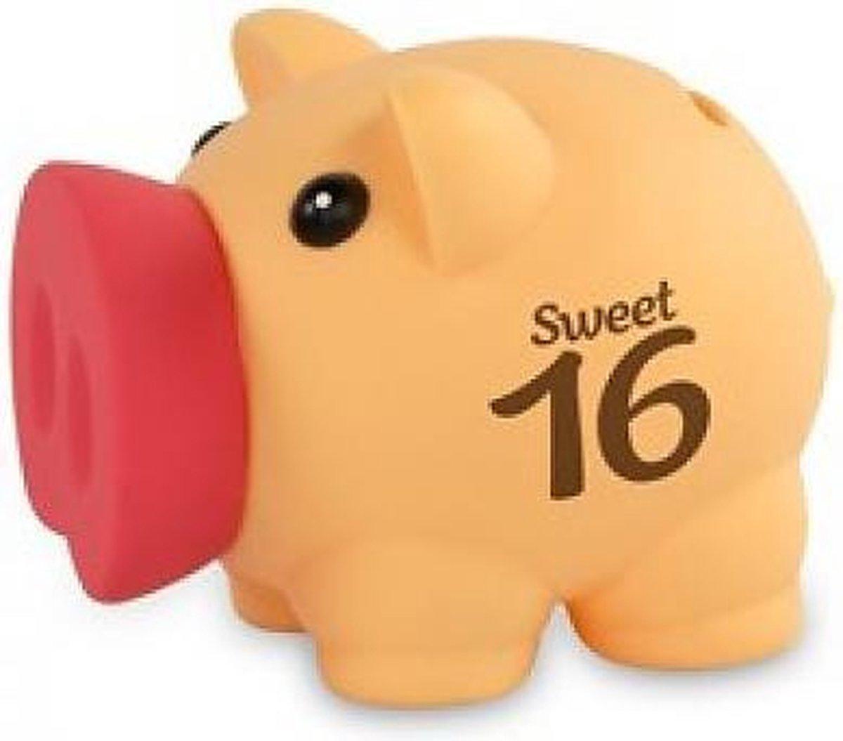 Miko - Spaarvarkentje - Sweet 16