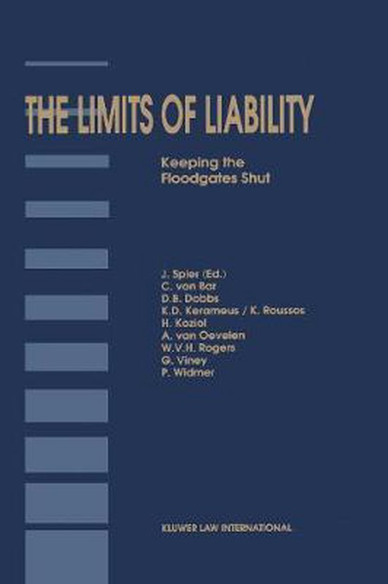 Afbeelding van The Limits of Liability