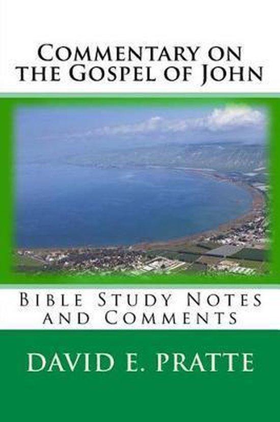 Boek cover Commentary on the Gospel of John van David E Pratte (Paperback)
