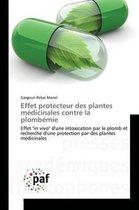 Effet Protecteur Des Plantes M dicinales Contre La Plomb mie