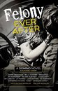 Boek cover Felony Ever After van Belle Aurora