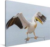 Roze pelikaan met gestrekte vleugels Canvas 140x90 cm - Foto print op Canvas schilderij (Wanddecoratie woonkamer / slaapkamer)