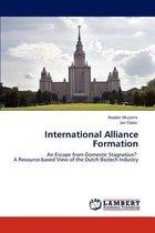 International Alliance Formation