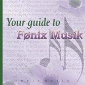 Your Guide To Fonix Musik 02