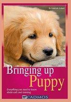 Bringing Up Puppy