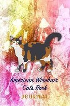 American Wirehair Cats Rock