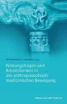 Führungsfragen und Arbeitsformen in der anthroposophisch-medizinischen Bewegung