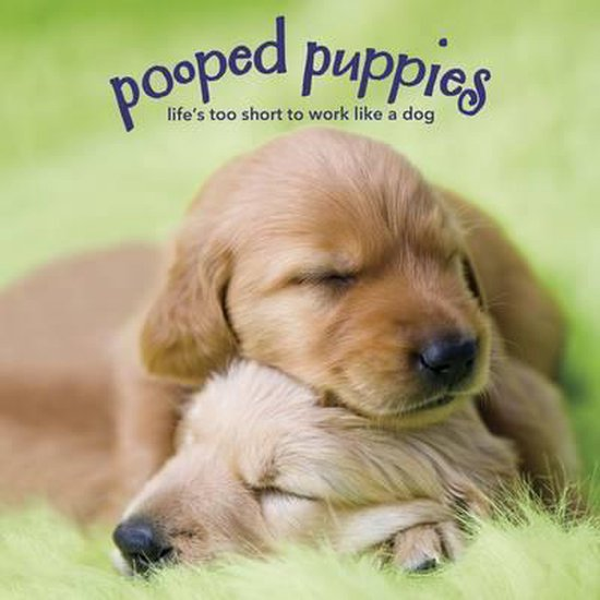 Pooped Puppies