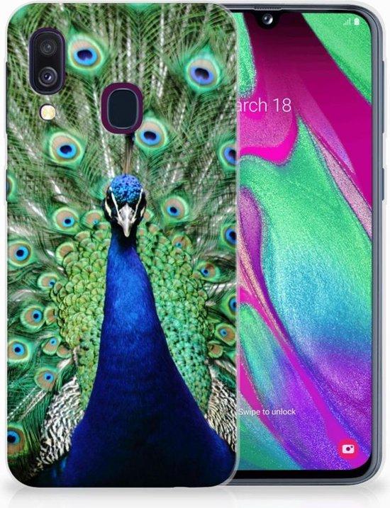 Samsung A40 TPU Silicone Hoesje Design Pauw