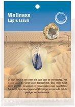 Ruben Robijn Lapis lazuli gezondheids hanger