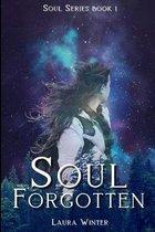 Boek cover Soul Forgotten van Laura Winter