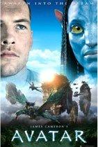 Avatar poster film-Pandora-Science fiction 61x91.5cm.