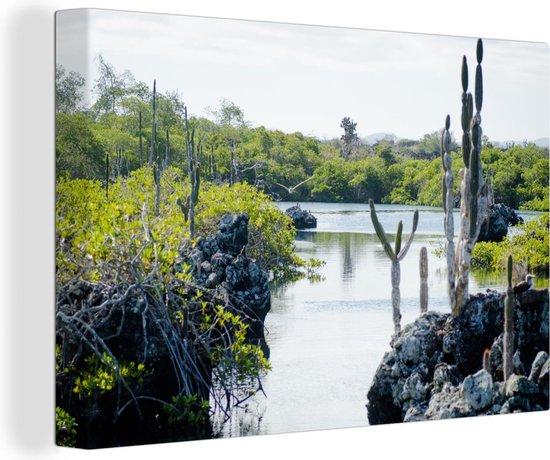 Water met rotsen en cactussen Galapagoseilanden Canvas 140x90 cm - Foto print op Canvas schilderij (Wanddecoratie woonkamer / slaapkamer) / Zee en Strand