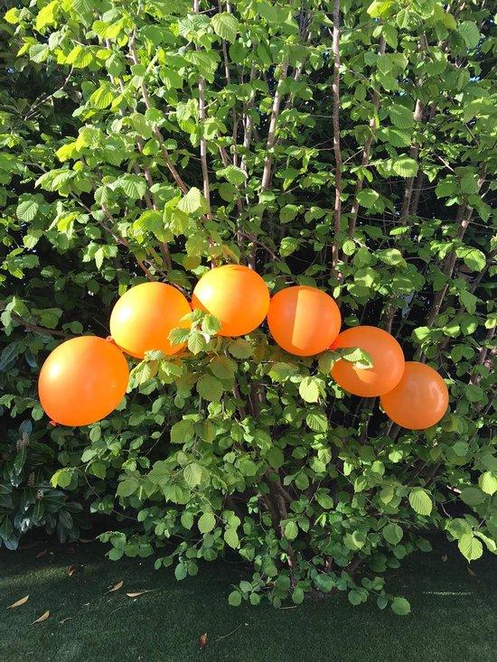 Ballonnen-Oranje-15 knoopballonnen- ballonnen met Gratis Ballonslinger-slinger-feesten-ballonnenslinger-oranje feesten - alle sporten