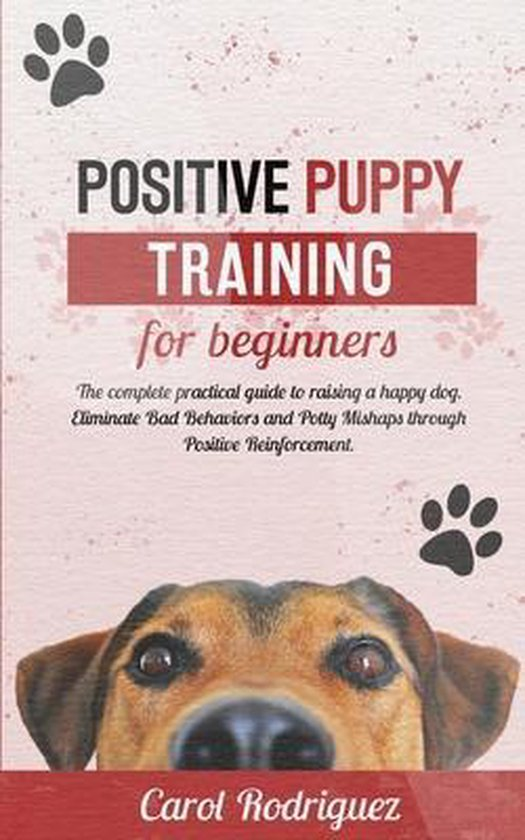 Positive Puppy Training for Beginners