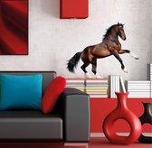Muursticker Paard - 60 x 47 cm