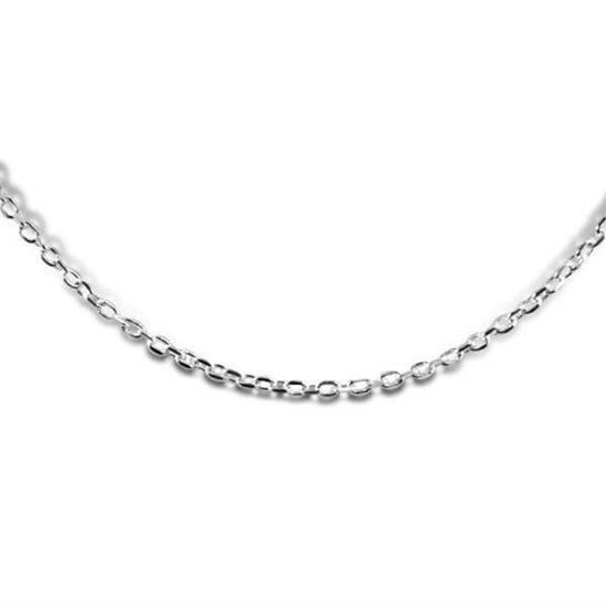 960100963 - Zilveren Collier - Anker Schakel met Lobstersluiting 2 mm - 43 cm - Zilverkleurig