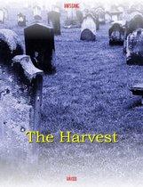 Ian's Gang: The Harvest