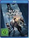 Maze Runner: Die Auserwählten in der Todeszone/Blu-ray