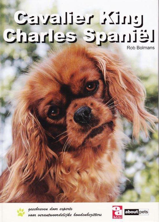 Cavalier King Charles Spaniël - OD Basis boek - R. Bolmans | Readingchampions.org.uk