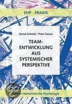 Teamentwicklung aus systemischer Perspektive