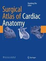 Surgical Atlas of Cardiac Anatomy