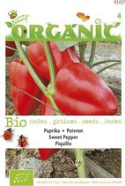 Buzzy® Organic - Paprika Piquillo rood (BIO)