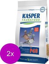 Kasper Faunafood P40 Krachtvoer - Vogel - Aanvullend voer - 2 x 3 kg