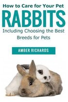 How to Care for Your Pet Rabbits