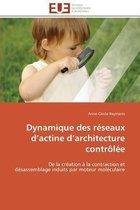 Dynamique Des R�seaux D Actine D Architecture Contr�l�e