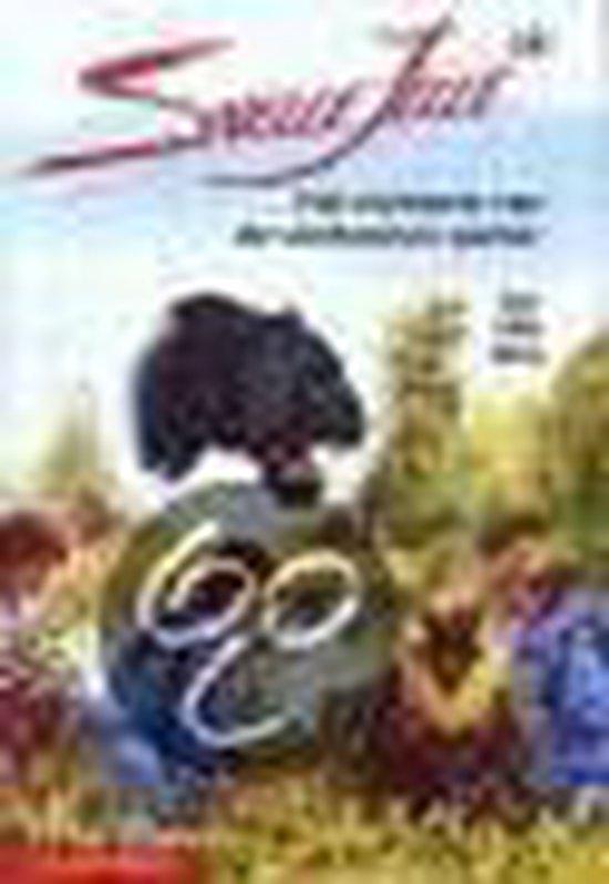 Snelle Jelle: Het Mysterie Van De Verdwenen Panter - Ad van Gils  