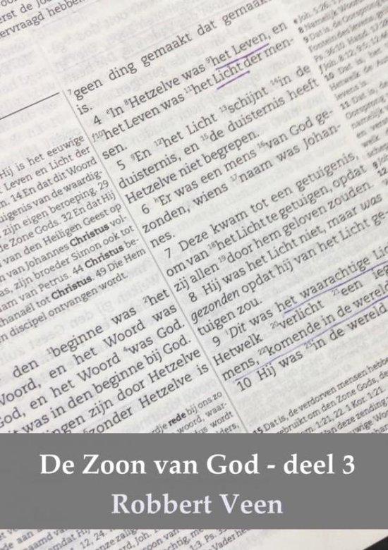 De Zoon van God deel 3 - Robbert Veen |