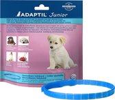 Adaptil Halsband - Hond Junior - 37,5 cm