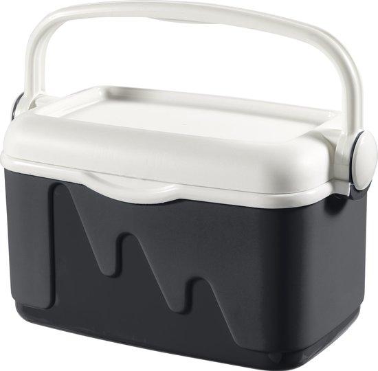 Curver Koelbox - 10L - grijs