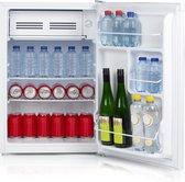 Primo PR100FR - Mini koelkast