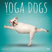 Yoga Dogs Kalender 2019
