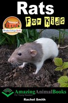 Rats For Kids