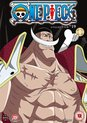 One Piece (Uncut) Collection 19 (Episodes 446-468) (Import)