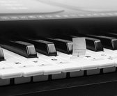 Piano Stickers – Noten labels – Piano spelen voor Beginners – 88 Stuks – Keyboard & Piano - Eenvoudig Leren Spelen