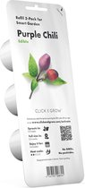 Click & Grow - Navulling Purple Chili