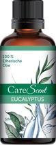 CareScent Eucalyptus Olie 50ml | Etherische Olie | Essentiële Olie | Geur Olie | Aroma Olie | Aroma Diffuser Olie | Eucalyptusolie