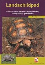 Over Dieren 162 -   De landschildpad